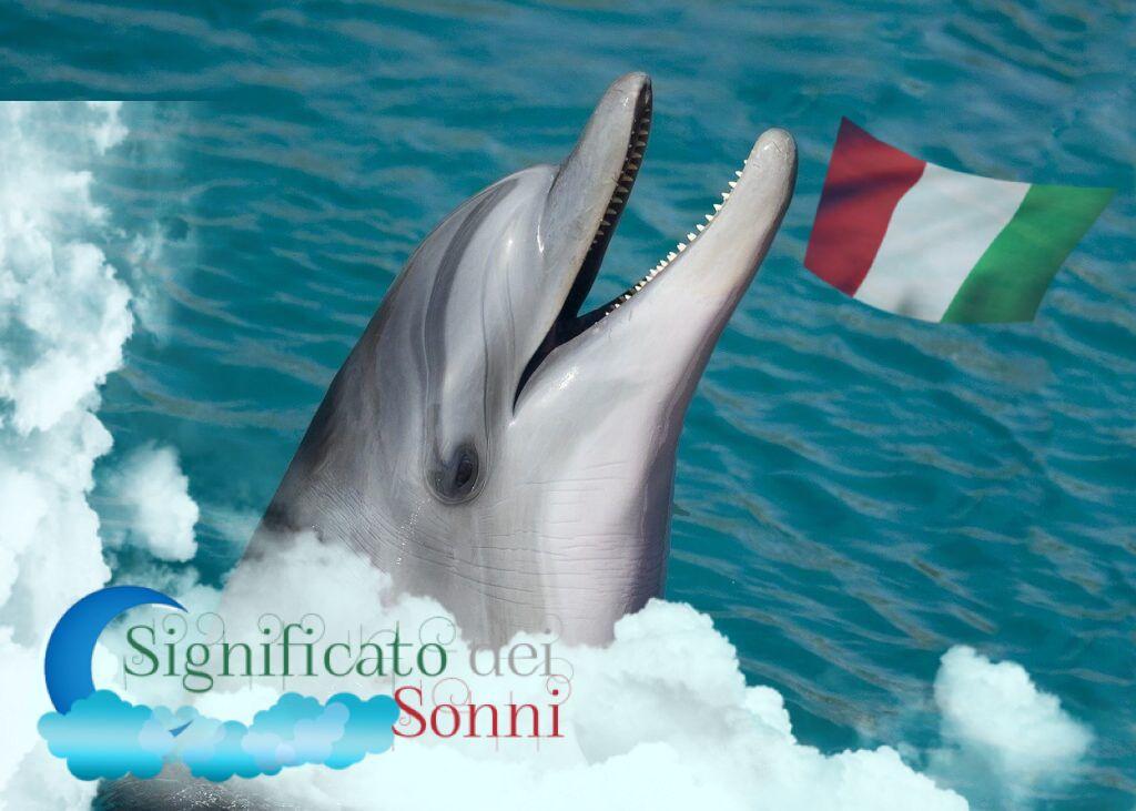 sognare i Delfini