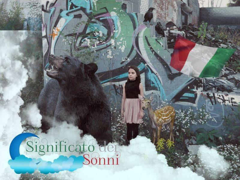 Sogno dell'orso nero: Che cosa potrebbe essere possibile raccontare