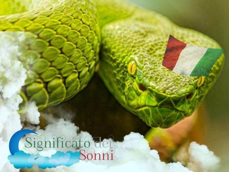 che-cosa-significa-sognare-serpenti-e