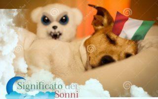 Sognare i cani, incubo o sorpresa?