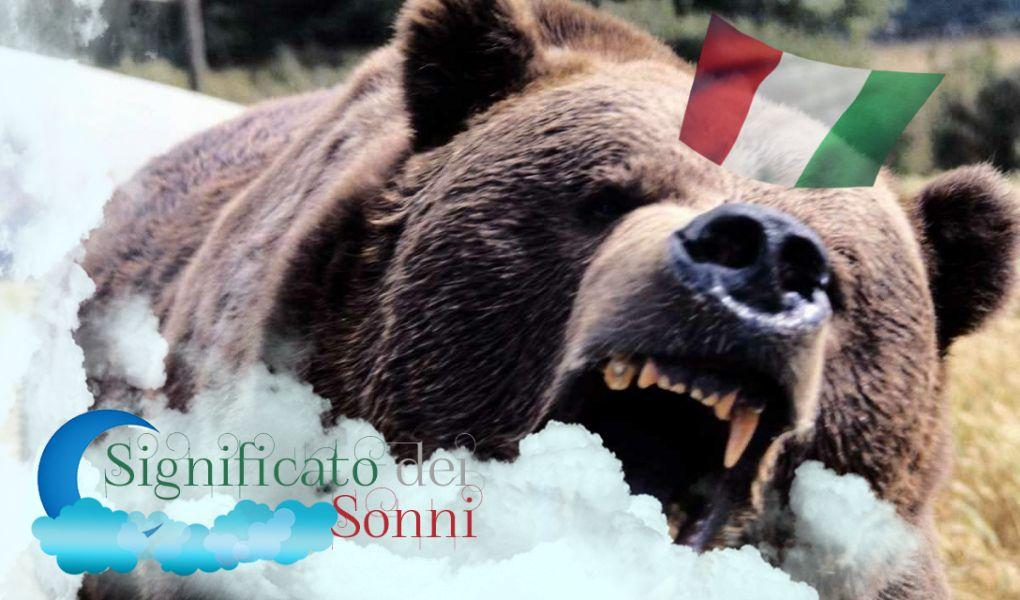 Il significato del sogno dell'orso: Tutte le sue interessanti implicazioni