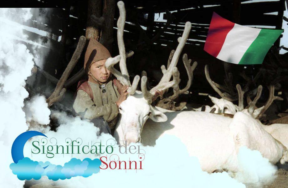 Interpretazione di sogno su un renna