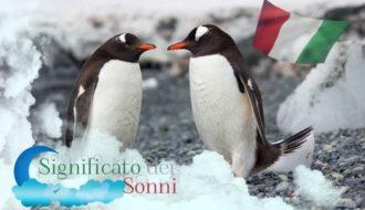 Pinguino; Il significato del simbolo del sogno