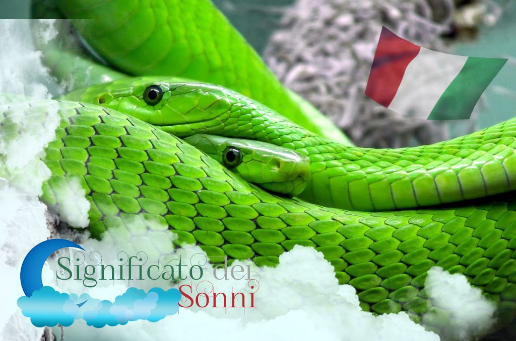 Che cosa significa sognare serpenti e vipere