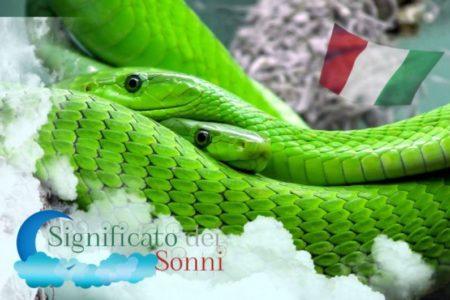 Significato biblico di serpenti nei sogni: Dovreste essere preoccupati?