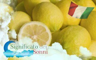 Significato di sognare i limoni