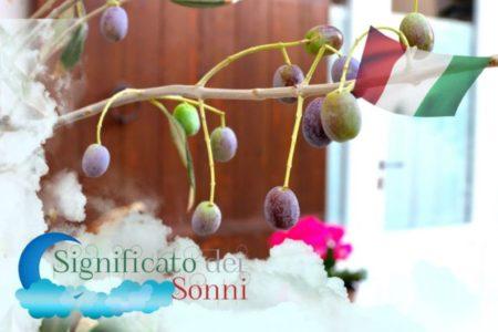 Significato di Sognare olive