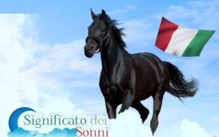 Sognando i cavalli