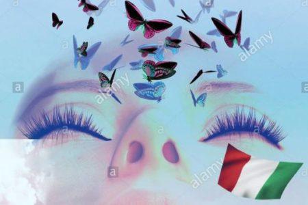 Sognando le farfalle