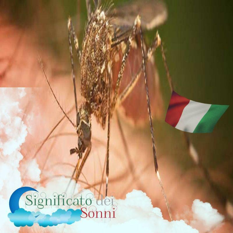 sognando-mosche-e-zanzare