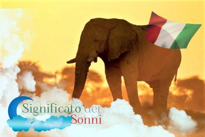 Sogni sugli elefanti - Interpretazione e significato