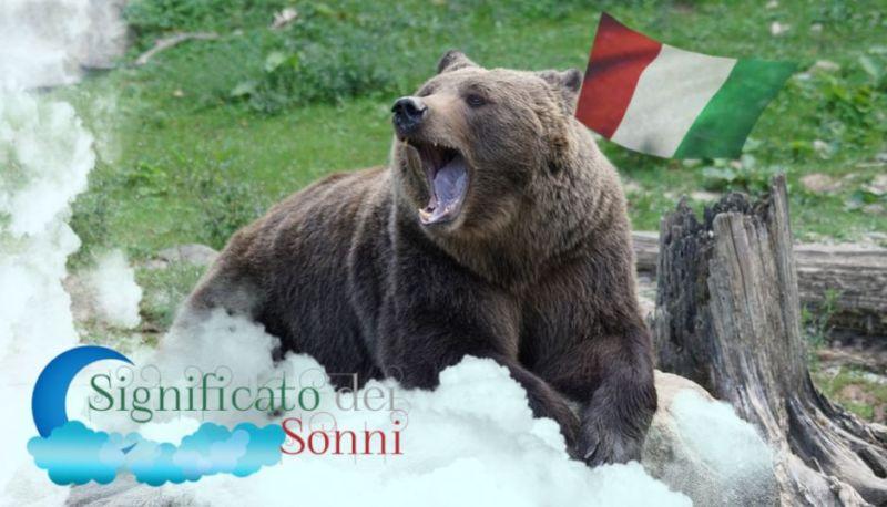 Sogni sugli orsi - Interpretazione e significato
