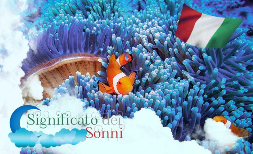 Sogni sui pesci - Interpretazione e significato