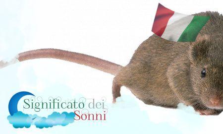 Sogni sui topi - Interpretazione e significato
