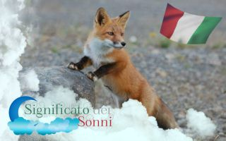 Sogni sulle volpi - Significato e interpretazione