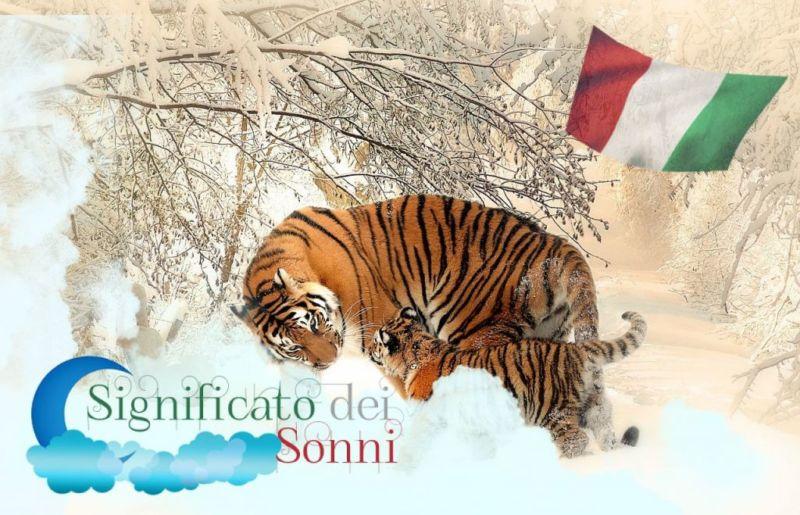 Sognare una tigre, cosa significa?